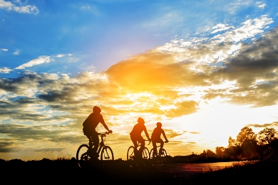Cyclists on the road at sunset