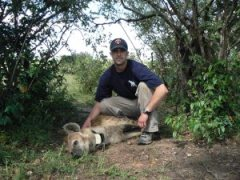 Dr Flies with Hendrix the hyena, which is anesthetized in this pic but was released back into the wild shortly afterwards