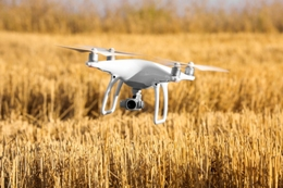 Aerial drone flying over wheat field