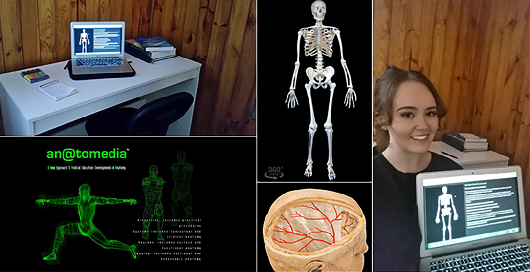 Anatomy Images – An@tomedia 2020, An@tomedia, image, anatomedia.com, viewed 7 May 2020