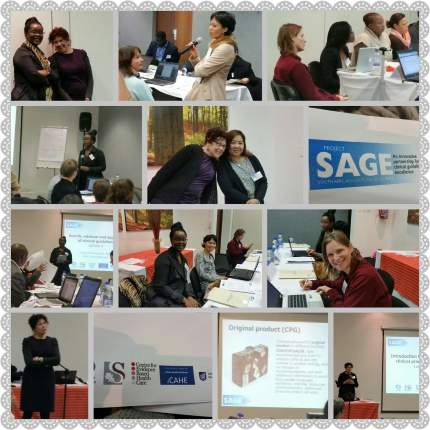 photo grid of the SAGE workshop