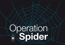Citizen Science - Operation Spider