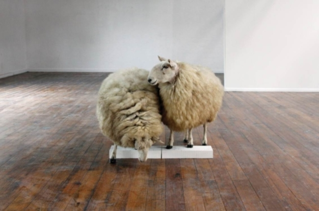 Tegg_Linda_Sheep_Study_2010
