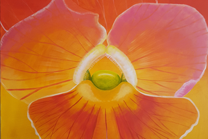 artwork Catherine Pallin, Viola Yellow and Red flower